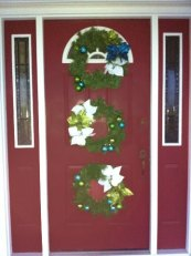 front-door-1.2011