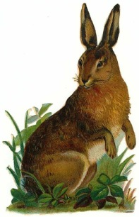 Vintage Easter bunny 1