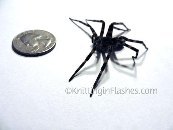 004-Spider